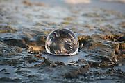Crystal ball in tidal pool, Jekyll Island Georgia, winter.