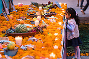 A young Mexican girl looks at a large Dead of the Dead altar known as an ofrenda honoring deceased relatives during the Dia de Muertos festival in San Miguel de Allende, Mexico. The multi-day festival is to remember friends and family members who have died using calaveras, aztec marigolds, alfeniques, papel picado and the favorite foods and beverages of the departed.