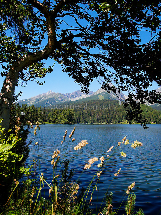 Strbske pleso alpine lake in the high tatras, Slobvakia.
