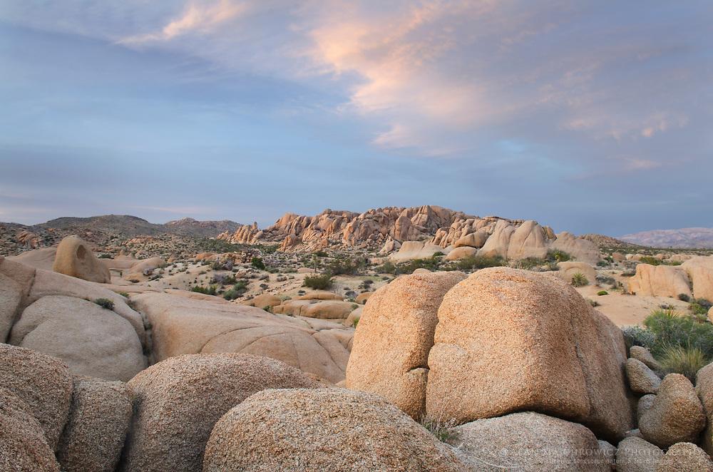 Jumbo Rocks area of Joshua Tree National Park California