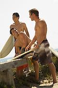 Three Surfers on Shore