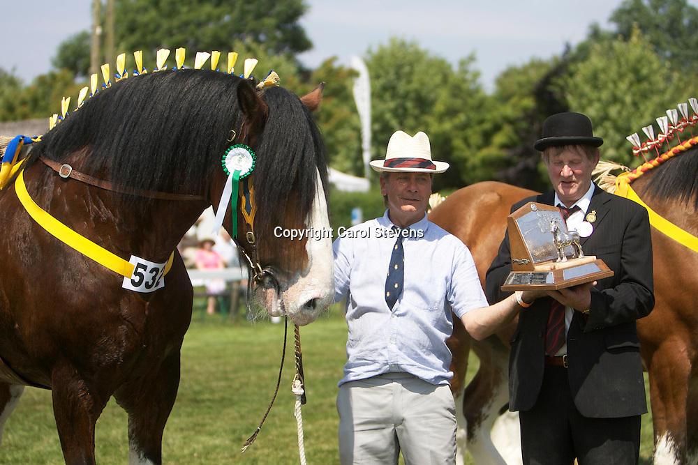 Paul Bedford and his own 4 year old bay stallion  Metheringham Upton Hamlet<br />