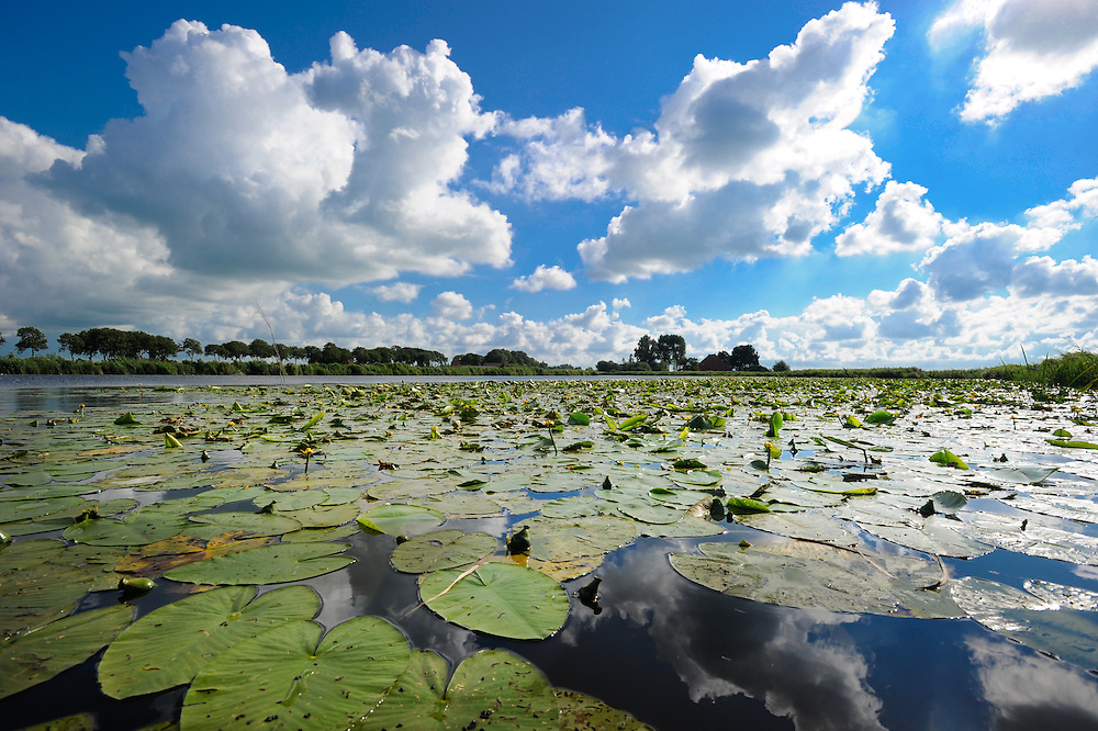 Typical scenes from Friesland, The Netherlands.