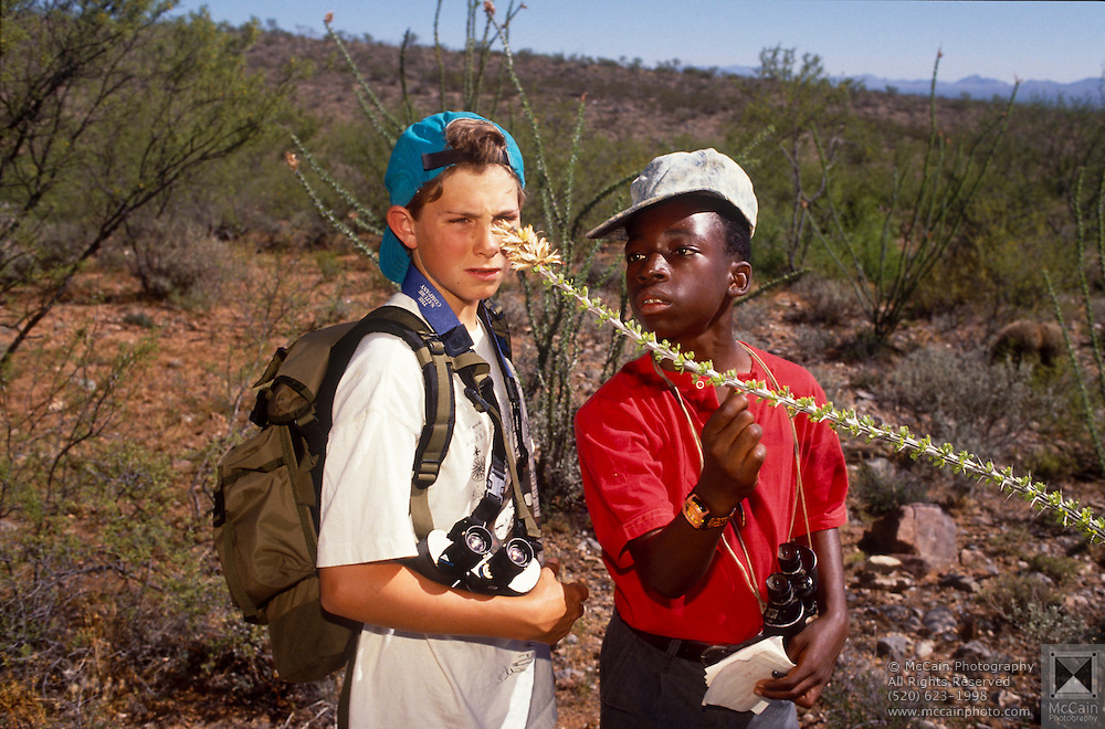 Cooper Scollan and Kerry Joseph examine insects on ocotillo plant, Chiricahua Mountains, Arizona..Media Usage:.Subject photograph(s) are copyrighted Edward McCain. All rights are reserved except those specifically granted by McCain Photography in writing...McCain Photography.211 S 4th Avenue.Tucson, AZ 85701-2103.(520) 623-1998.mobile: (520) 990-0999.fax: (520) 623-1190.http://www.mccainphoto.com.edward@mccainphoto.com.