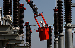 Photographed for Elia Annual Report:<br />