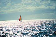 Windsurfer<br />