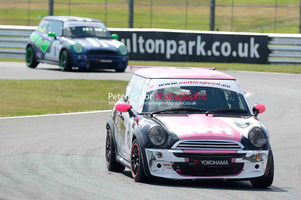 #8 Hannah Chapman Mini Cooper during Celtic Speed Scottish Mini Cooper Cup - Race 1 as part of the Mini Festival  at Oulton Park, Little Budworth, Cheshire, United Kingdom. August 08 2015. World Copyright Peter Taylor. Copy of publication required for printed pictures.  Every used picture is fee-liable. http://archive.petertaylor-photographic.co.uk