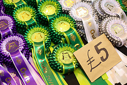 © Licensed to London News Pictures. 13/03/2016. Birmingham, UK. Winners rosettes can be bought at Crufts 2016 held at the NEC in Birmingham, West Midlands, UK. The world's largest dog show, Crufts is this year celebrating it's 125th anniversary. The annual event is organised and hosted by the Kennel Club and has been running since 1891. Photo credit : Ian Hinchliffe/LNP