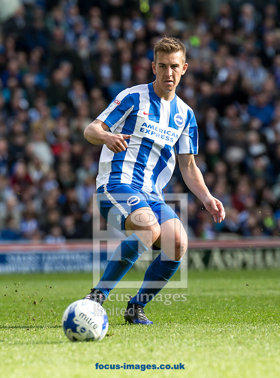 Uwe Hunemeier of Brighton &amp; Hove Albion during the Sky Bet Championship match at the American Express Community Stadium, Brighton and Hove<br /> Picture by Liam McAvoy/Focus Images Ltd 07413 543156<br /> 01/04/2017