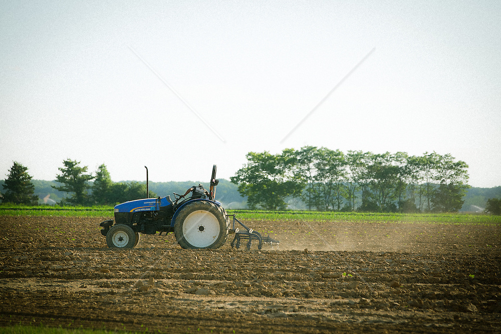farmer working the field in The Hamptons