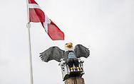 FC Roskildes vartegn Ørnen i Roskilde Idrætspark før kampen i NordicBet Ligaen mellem FC Roskilde og Vendsyssel FF den 18. august 2019 i Roskilde Idrætspark (Foto: Claus Birch)