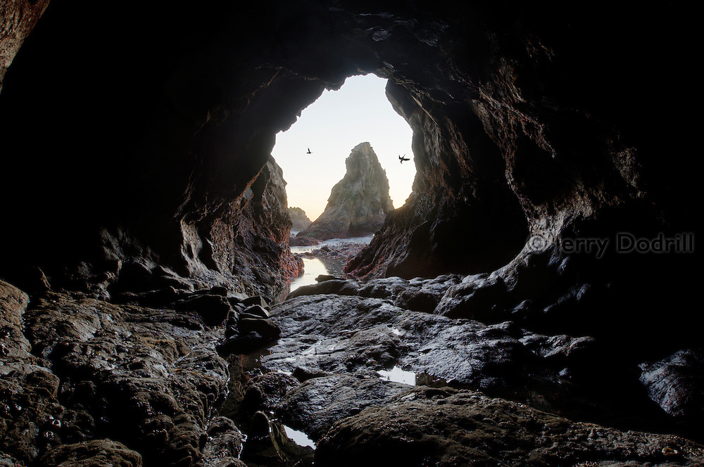 Interior view of a sea cave during a very low tide along Northern California's  Sonoma Coast.