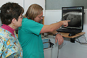 Vets Examine an x-ray of a patient in a veterinary clinic