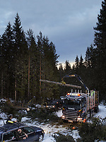 Image for Scania's international truck calendar.