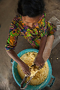 Amerindian woman, Winifred Brown MODEL RELEASE GYA#6<br /> Using a Matape to strain liquid from mashed Cassava to make Cassava Flour.<br /> Katoka<br /> Rupununi<br /> GUYANA<br /> South America