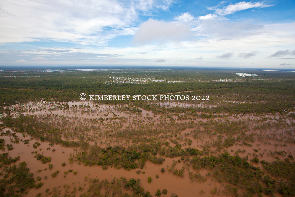 Floodplains beside the Fitzroy River near Willare
