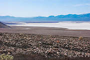 Death Valley Salt Flats