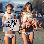 Berlin, Germany - 19.01.2016<br /> <br /> PETA protest at the Fashion Week in Berlin. Activists of the animal protection organization PETA protest lightly dressed during freezing temperatures on the square of March 18 against the use of wool.<br /> <br /> PETA Protest bei der Fashion Week in Berlin. Aktivistinnen der Tierschutzorganisation protestieren leicht bekleidet bei Minusgraden auf dem Platz des 18.Maerz gegen die Nutzung von Schurwolle.<br /> <br /> Photo: Bjoern Kietzmann