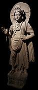 Standing bodhisattva. Shabaz Garhi-comes from. Schist sculpture from Pakistan