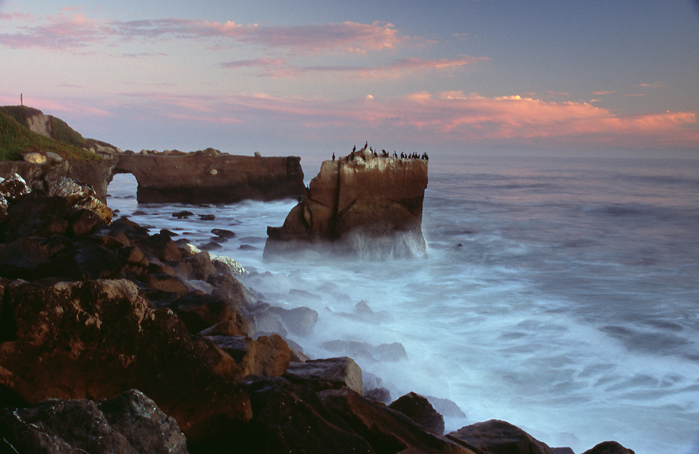 USA, California, Santa Cruz, Natural Bridge S.P. and seascape at dusk
