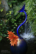 Glass sculpture by Chihuly mimics plant forms in Climatron at Missouri Botanical Garden; St. Louis, Missouri.