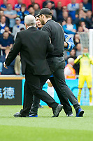 Football - 2016 / 2017 Premier League - Swansea City vs. Everton<br /> <br /> a pitch invader, fan is escorted from the pitch  at Liberty Stadium.<br /> <br /> COLORSPORT/WINSTON BYNORTH