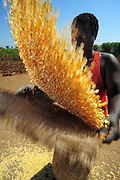 """12-03-29   -- LIRA, UGANDA -- Former resident at the Cultural Centre IDP camp Hellen Akech sifts maize on March 29.  All of the approximately 1,000 others who lived in the camp have returned home but Akech has returned to squat on the land. """"There was nowhere for me to stay, my land was grabbed so I came back here."""" Photo by Daniel Hayduk"""