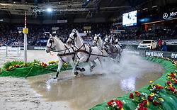 DOBROVITZ József (HUN), Harcos, Siglavy Capriola, Panda, Tulipan XVIII-2-6<br /> Stuttgart - German Masters 2018<br /> FEI World Cup Driving/Fahren<br /> 17. November 2018<br /> © www.sportfotos-lafrentz.de/Stefan Lafrentz