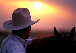 man standing beside his horse looking out onto the sunset