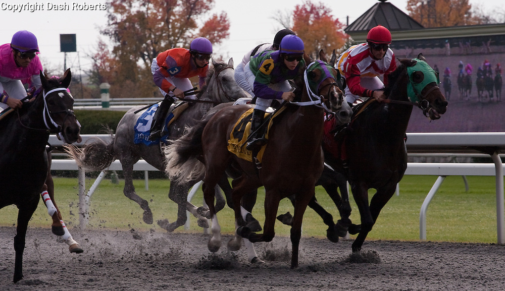 Thoroughbreds race on the polytrack at Keeneland during the 2009 Fall Meet. Freddie Lenclud on #4 Tip Toe Tulip battles for the lead with Leandro Gonclaves (red cap) abroad Metro Devil.