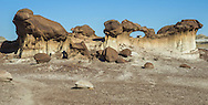 The Bisti/De-Na-Zin Wilderness, a rolling landscape of badlands, offers some of the most unusual scenery found in the Four Corners Region of the American Southwest.<br /> Located in New Mexico, the Wilderness is a desolate area of steeply eroded badlands with fragments of petrified tree trunks scattered thoughout the sand and sage desert.<br /> Translated from the Navajo word Bistah&iacute;, Bisti means &quot;among the adobe formations.&quot; De-Na-Zin takes its name from the Navajo words for &quot;cranes.&quot;