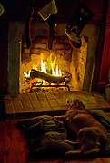 Dog asleep on hearth of fireplace as stockings hang on the mantle.