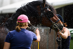 © London News Pictures. 12/05/2016. Windsor, UK. A horse being watered down in warm weather on the first day of the 2016 Royal Windsor Horse Show, held in the grounds of Windsor Castle in Berkshire, England. The opening day of the event was cancelled due to heavy rain and waterlogged grounds. This years event is part of HRH Queen Elizabeth II's 90th birthday celebrations.  Photo credit: Ben Cawthra/LNP