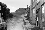 Rörås i Norge