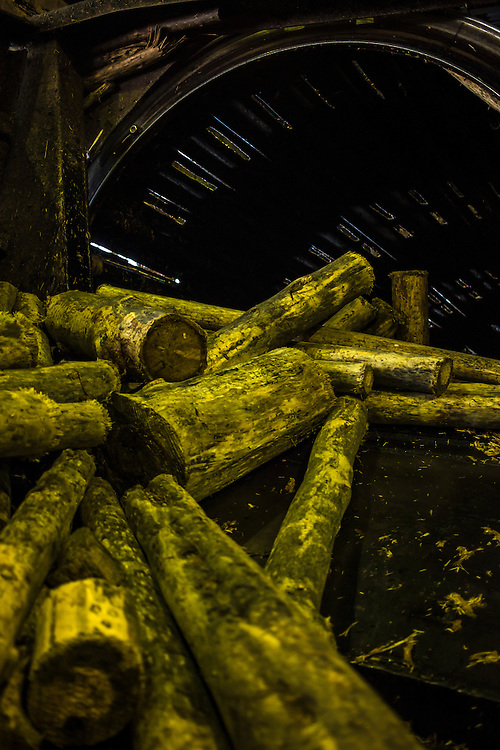 Large logs spill out of a machine that strips them of their bark at the Baikalsk Pulp and Paper Mill on Monday, October 28, 2013 in Baikalsk, Russia.