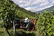Italy - Bolzano. Valle Isarco: Azienda Raschlerof