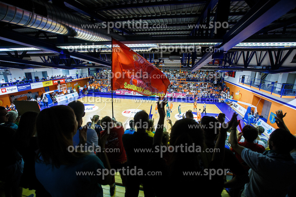 Fans of KK Zlatorog during basketball match between KK Zlatorog and KK Helios Suns in 4th match of Nova KBM Slovenian Champions League Final 2015/16 on June 5, 2016 in Dvorana Komunalnega centra, Domzale, Slovenia Photo by Grega Valancic / Sportida