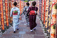 "Arashiyama Station's ""Kimono Forest"" is a colorful aspect of the station's facelift includes designer Yasumichi Morita creations of kimono fabric patterns arranged on cylindrical columns.  The patterns have been placed inside 600 illuminated poles along pathways of the station, creating a ""kimono forest""."
