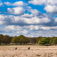 People enjoy the sunny weather in the fields of Richmond Park in London in a sunny day