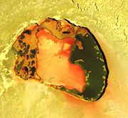 volcanic crater named Tupan Patera on Jupiter's moon Io, as seen in this image from NASA's Galileo spacecraft, show varied results of lava interacting with sulphur-rich materials. The colourfulness of the image is only slightly enhanced from what the human eye would see on the scene. The red in the image includes a small amount of infrared energy. Tupan Patera, named after a Brazilian thunder god, was seen as an active hot spot in earlier Galileo observations. This image taken in October 2001. Tupan is clearly shown to be a volcanic depression, about 75 kilometres (47 miles) across, surrounded by cliffs about 900 meters (3000 feet) tall