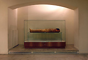 """GEORGES LABIT MUSEUM, TOULOUSE, FRANCE - MARCH 03 - EXCLUSIVE : A general view of the Egyptian mummy encased in a sarcophagus on March 3, 2009 in the Georges Labit Museum, Toulouse, France. The Egyptian mummy arrived in Toulouse in 1849, encased in a sarcophagus labelled """"In-Imen"""" from the 7th or 8th century BC. It is preserved at the Labit Museum since 1949. The mummy is now the subject of a very rare tissue sampling operation to determine its datation.  (Photo by Manuel Cohen)"""