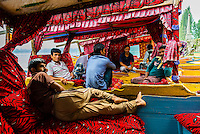 Boatmen relaxing aboard shikaras (boats) at a ghat, Dal Lake, Srinagar, Kashmir, Jammu and Kashmir State, India.