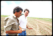 Monsanto agronomist & rice farm foreman walk across newly-prepped no-till field; Granja Bretanhas. Brazil