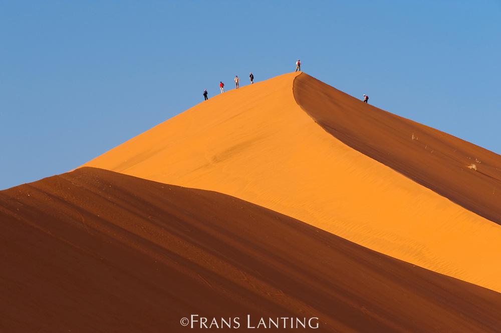 Hikers climbing sand dune, Sossusvlei, Namib-Naukluft National Park, Namibia