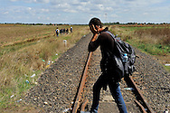 Refugees walking along an old railway line, just after passing across the border with Serbia near Röszke. Many of them have walked up to 50 kilometers. Within an hour a large police force arrived to stop refugeees and migrants continuing on their way, holding them in a field. The official border reception centres are full and refugees must camp on the ground, dependent on food donated by volunteer groups