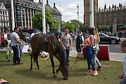 Protest against the imprisonment of the Connors family, Westminster, London. 28 June 2016