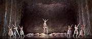 The Nutcracker <br /> choreography by Sir Peter Wright <br /> at the <br /> Birmingham Royal Ballet <br /> Birmingham Hippodrome, Great Britain <br /> 24th November 2017 <br /> <br /> <br /> <br /> Photograph by Elliott Franks <br /> Image licensed to Elliott Franks Photography Services