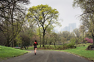 Spring greens in Central Park with a misty view of the midtown skyline.