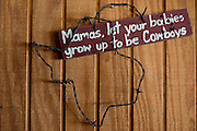 JUSTIN, TX - FEBRUARY 4, 2014: A home for sale at 1780 Strader Road for the What You Get column. The home also features a stand alone saloon featured here. (Cooper Neill / for The New York Times)