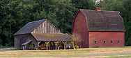There are two barns on the Annand/Rowlatt farmstead.  The Gable Roof Barn (left) was built in 1898 while the Gambrel Roof Barn (right) was built in 1939.  This farmland was first used by Joseph and Sarah Anne Annand and later by Len Rowlatt until his death in 1972.  The property is now part of Campbell Valley Regional Park in Langley, British Columbia, Canada.